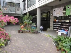 本川幼児園